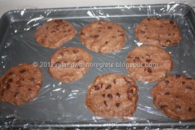 Almond milk solid remains -  freezing cookies