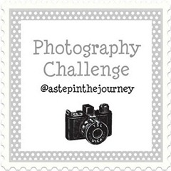 photo challenge button_2