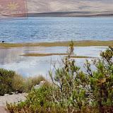 Arica - Parque Nacional Lauca  (10 de 10).jpg