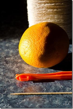 OrangePeelFeeder-3027