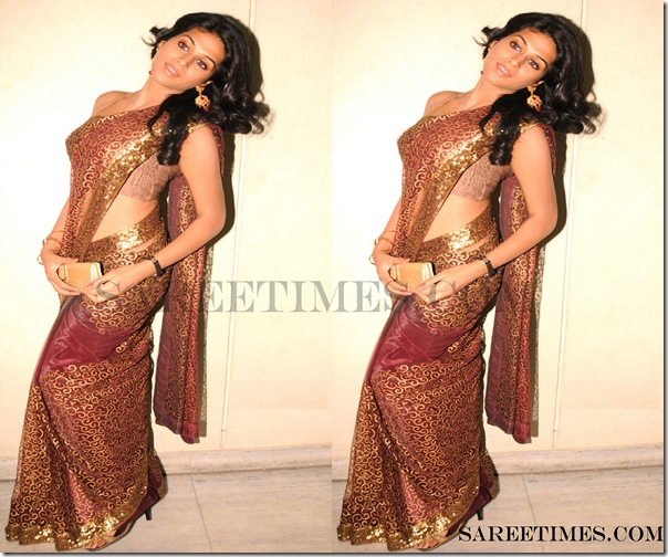 Shraddha_Das_Brown_Designer_Saree