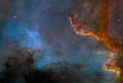 Parede Cygnus