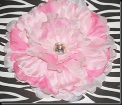 Light Pink and Pink Peony (1)