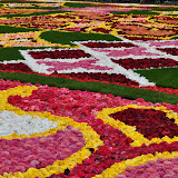 Brussels Flower Carpet 2010