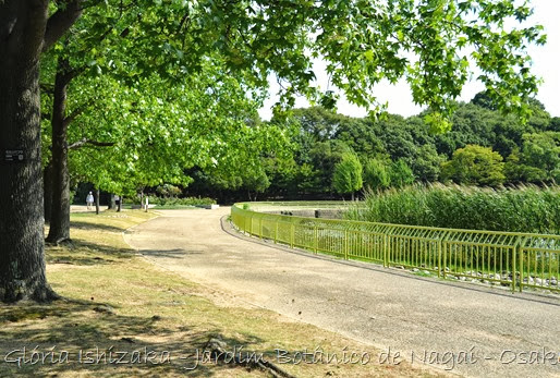 Glória Ishizaka - Jardim Botânico Nagai - Osaka 3