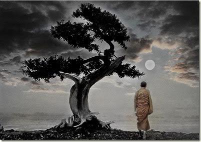 arbol budismo