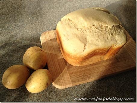 Paine cu cartofi si parmezan