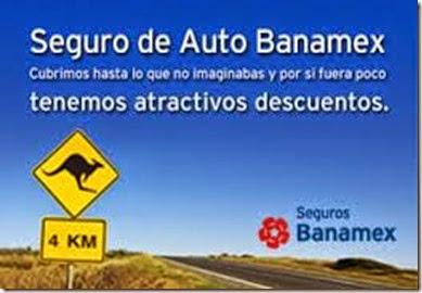Seguro para auto BANAMEX cotiza en linea