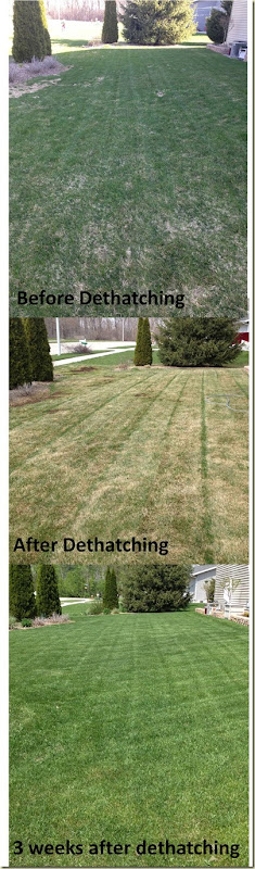 Dethatch time lapse