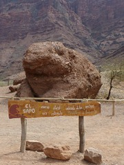 The Toad, Quebrada de las Conchas, Salta.