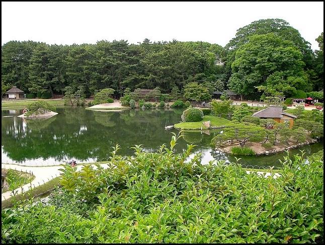 Tea plantation, Korakuen Garden in Okayama, Japan
