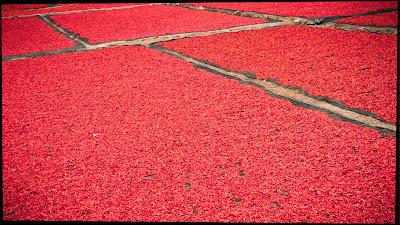 red_hot1.jpg