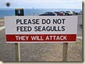 Warning_Sign_Sea Gulls