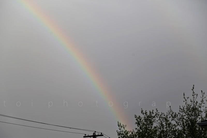 rainbow 1 copy