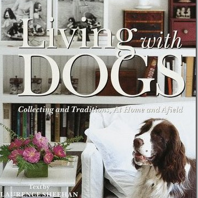 Dogs and Birds and Carol Sheehan:  Oh My!