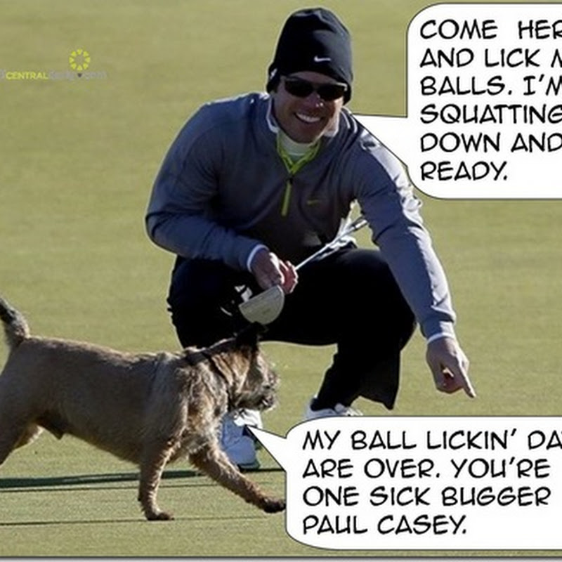 Scottish Dog Digby Gives Up Licking Balls After Paul Casey Encounter