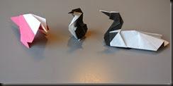 small bird, loon, penguin