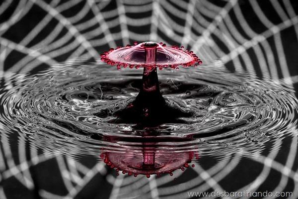 liquid-drop-art-gotas-caindo-foto-velocidade-hora-certa-desbaratinando (204)