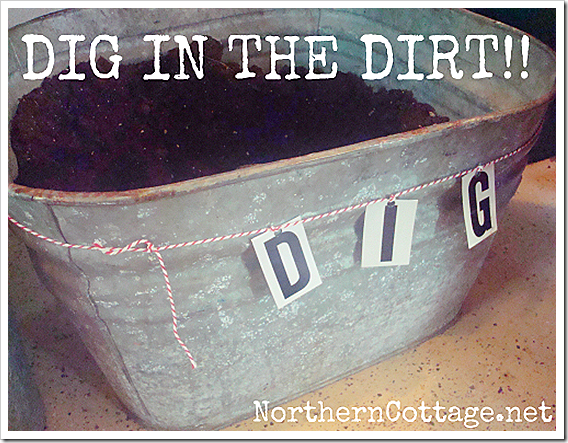 dig in the dirt bucket northern cottage