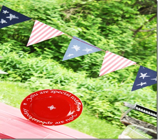 plate and flags color