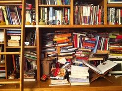 bookshelf 003