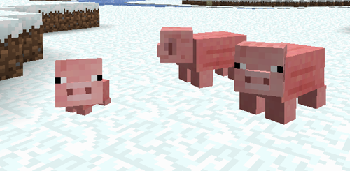 Pig_and_baby