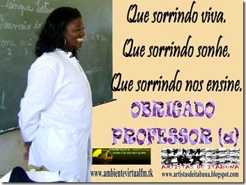 OBRIGADO PROFESSOR