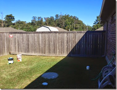 Running & Fence Staining (5)