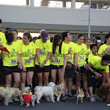 Pet Express Doggie Run 2012 Philippines. Jpg (45).JPG