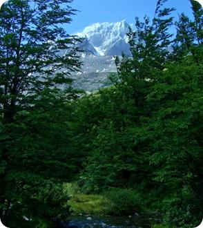Vista da montanha Punta Bariloche do Cerro Paine Grande durante a trilha Pehoé-Grey