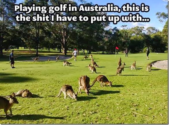 meanwhile-australia-39