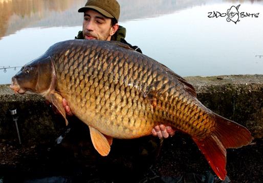 SchuppiEchternach25,5kg01