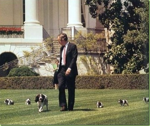 george h bush millie and the puppies