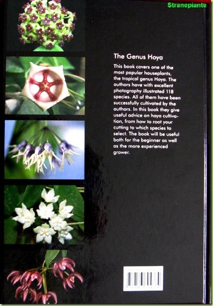 the genus hoya - retro - il genere hoya