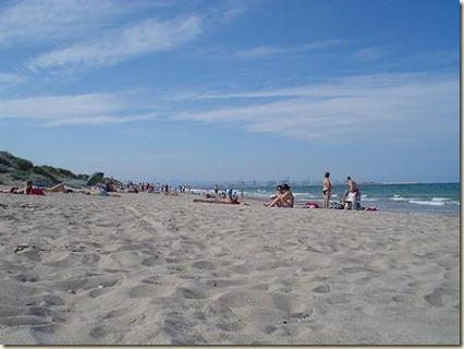 Playa de L'Arbre del Gos -s