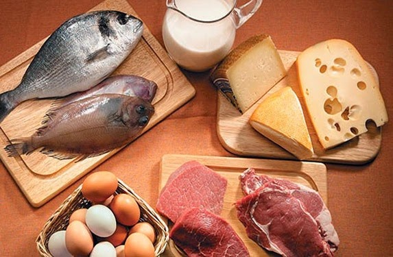 dieta-proteína