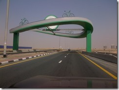 Dubai-20130620-00328