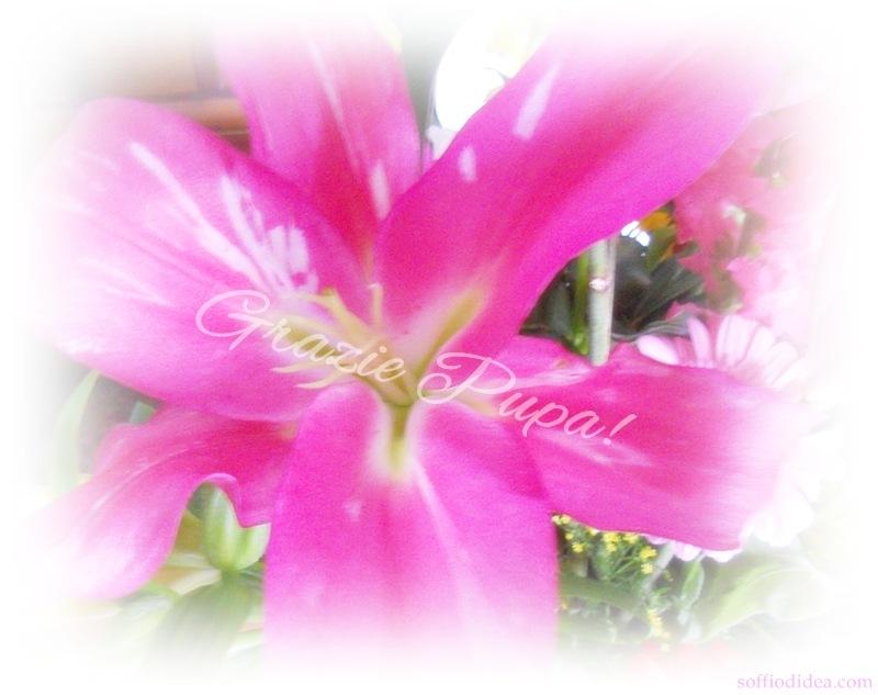Pupa-fiori-4