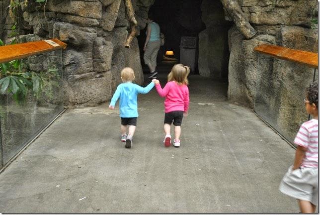Zoo Bangerts May 13 084