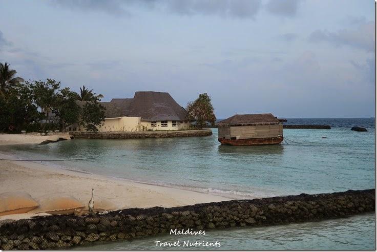 馬爾地夫 Centara渡假村 (49)