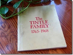 The_Tintle_Family