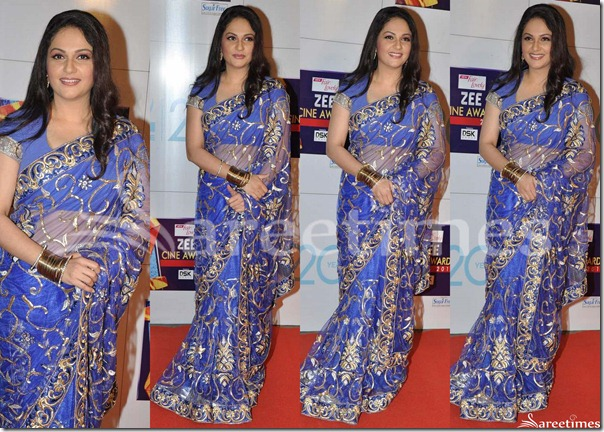 Gracy_Singh_Blue_Net_Saree