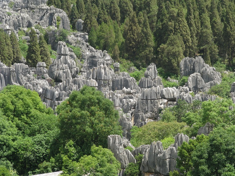 shilin-stone-forest-6