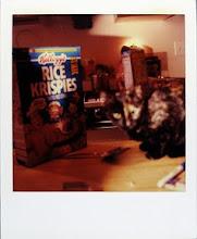 jamie livingston photo of the day September 08, 1997  ©hugh crawford