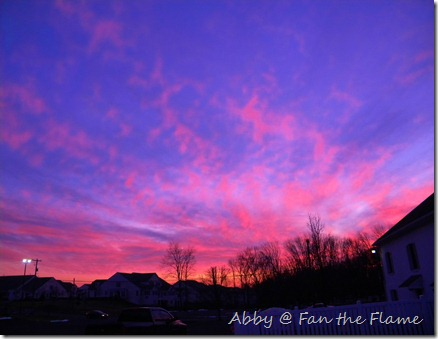 Gossamer Sunset, & Life! 017