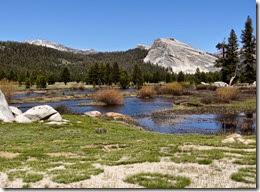 Yosemite Nat Park 143