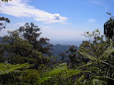 View from near the top of Gunung Talaga, Halimun (Daniel Quinn, February 2011)