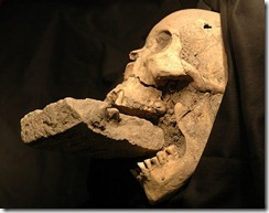 Скелет вампира с кирпичом во рту