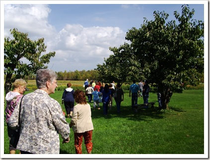 hurd orchard 031