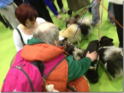 Photo 11-11-2012 13 50 35